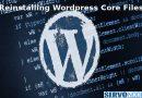 how to reinstall wordpress